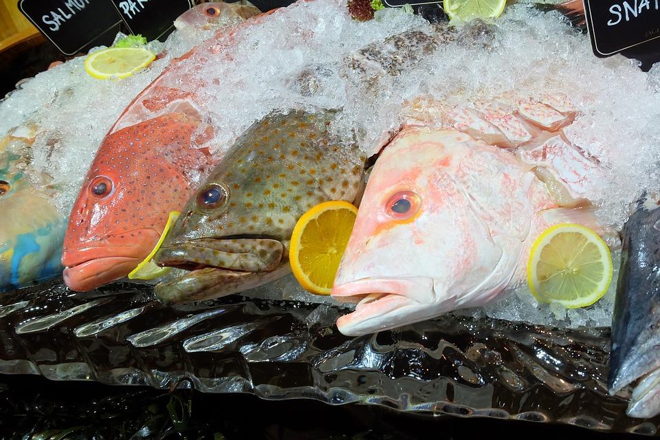 fish seafood dinner